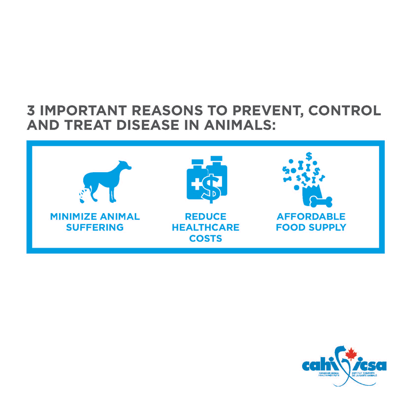 3 important reasons to prevent, control and treat disease in animals: minimize animal suffering, reduce healthcare costs, affordable food supply.